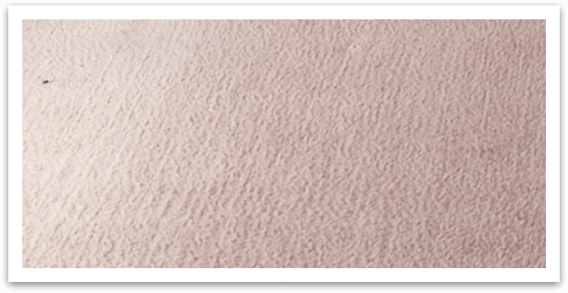 Verona Carpet Cleaning Services Local Quality Cleaners